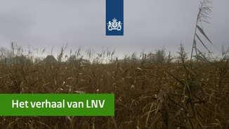 Het verhaal van LNV