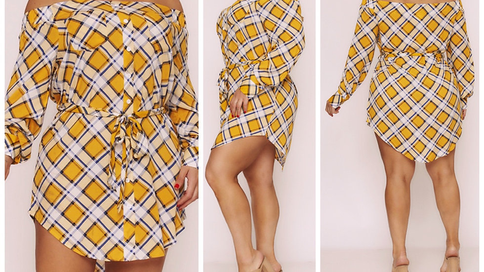 My Plaid Poppin' Plus Belted Dress
