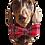 Thumbnail: Red plaid bow tie