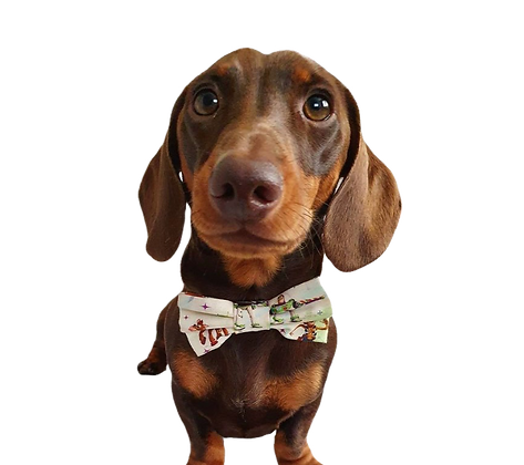 Toy story bow tie