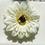 Thumbnail: Cream Flower elastic loop attachment
