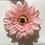 Thumbnail: Coral Flower elastic loop attachment