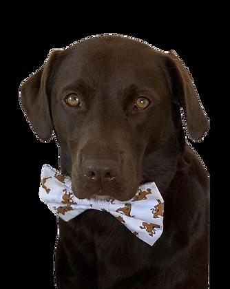 Scooby doo bow tie