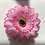Thumbnail: Pink two tone Flower elastic loop attachment