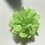 Thumbnail: Mini pale green Flower elastic loop attachment