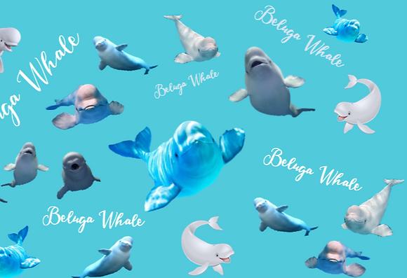 Beluga whale Bandana