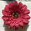 Thumbnail: Red Flower elastic loop attachment
