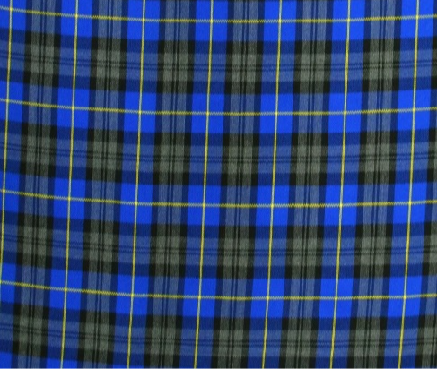 Blue plaid Bandana