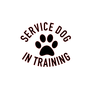 Service dog in training vinyl bandana add on