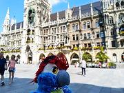 Blu & das Neue Rathaus auf dem Marienplatz