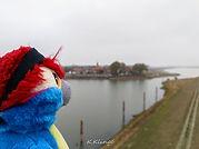Blu & Schnackenburg