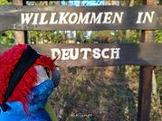 Blu & Deutsch