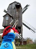 Blu & die Bockwindmühle von Wanzer