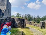Blu & die Ruine Weidelsburg