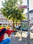 Blu & der Habichtswaldsteig