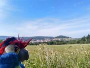 Blu & Schauenburg