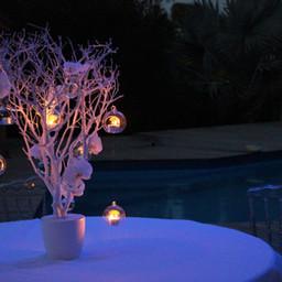 Fleurs-mariage-gard-herault-wedding-deco-buffet-bougie