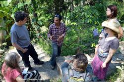 Maya Traditions Medical Herb Garden