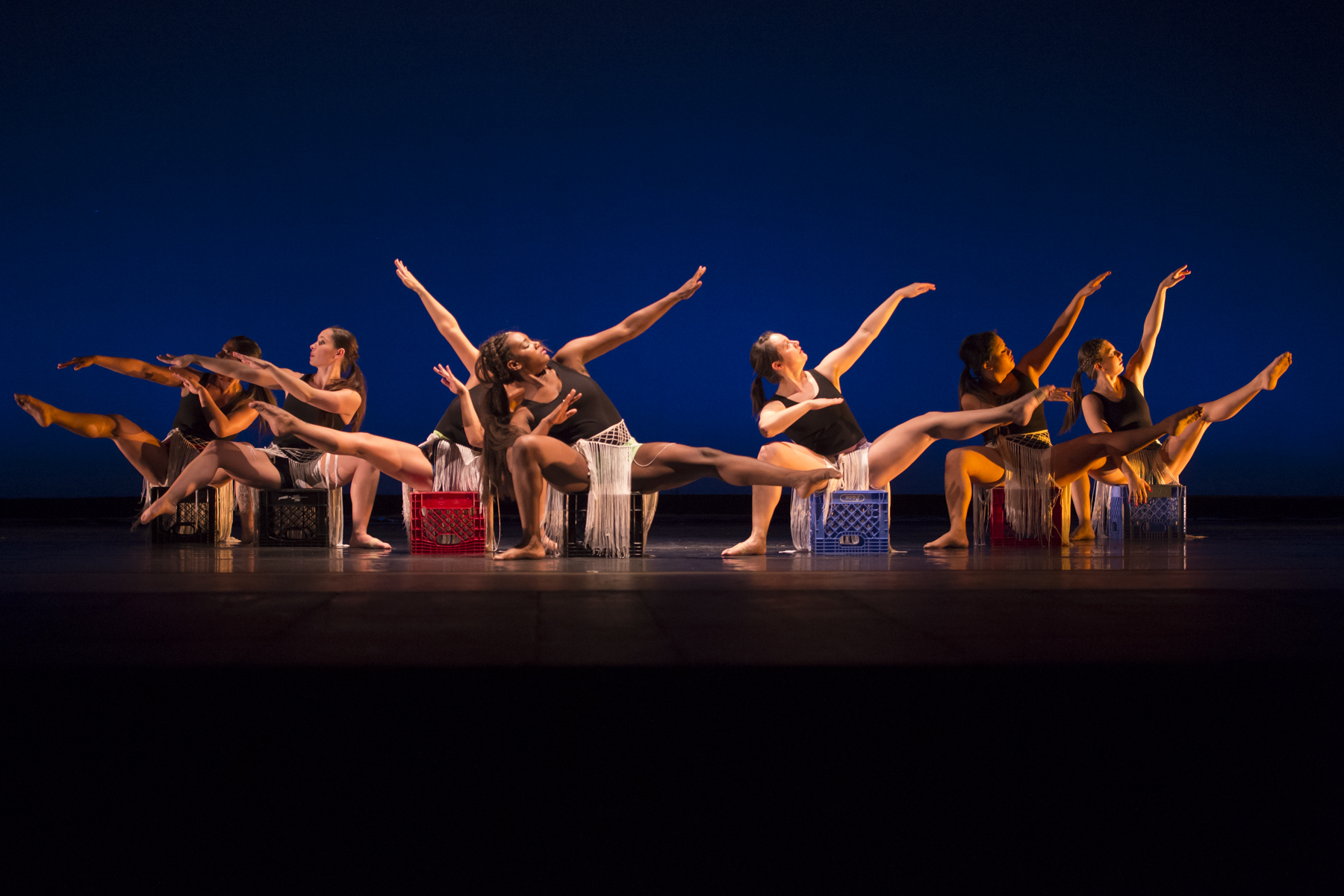 Shannons Dance