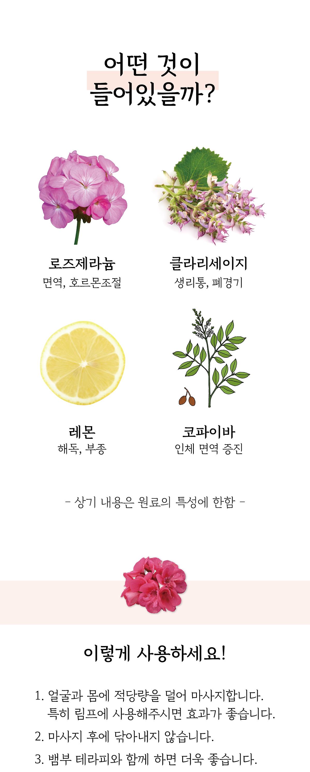 상세-로데밤-2.png