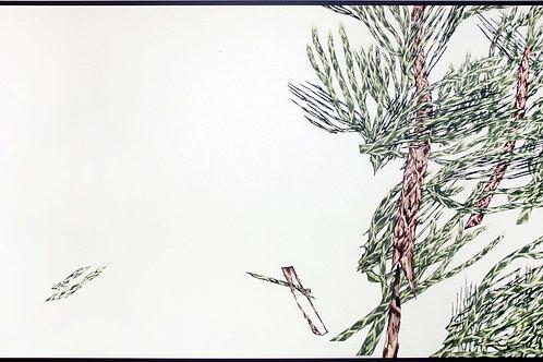Juniperus 1.1