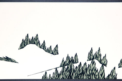 Juniperus_Long Shot