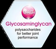 Hyaluflex | GAG