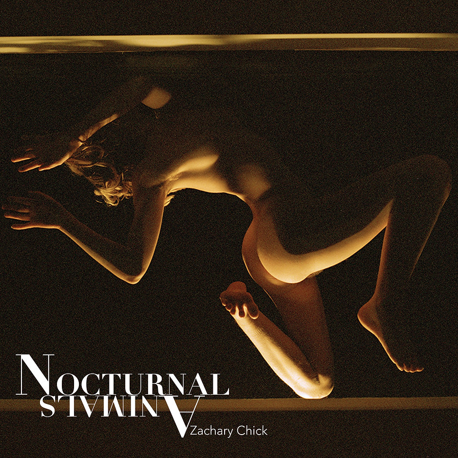 Text On image: Nocturnal Animals.  image features a naked female Caucasian body pressed against glass. The image is dark brown with parts of the body lit.