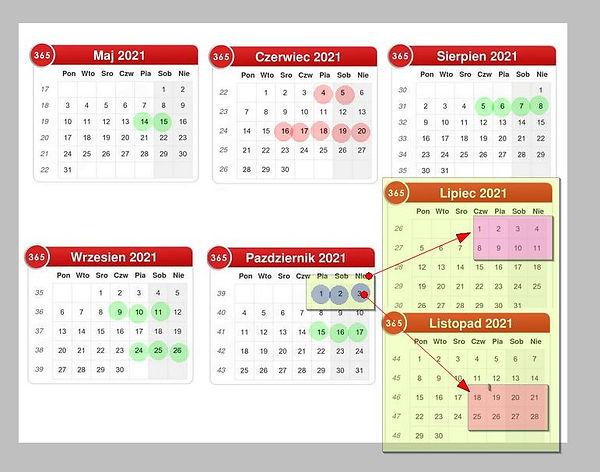 opti kalendarz.jpg