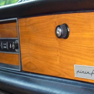 dash wood panels  .jpg