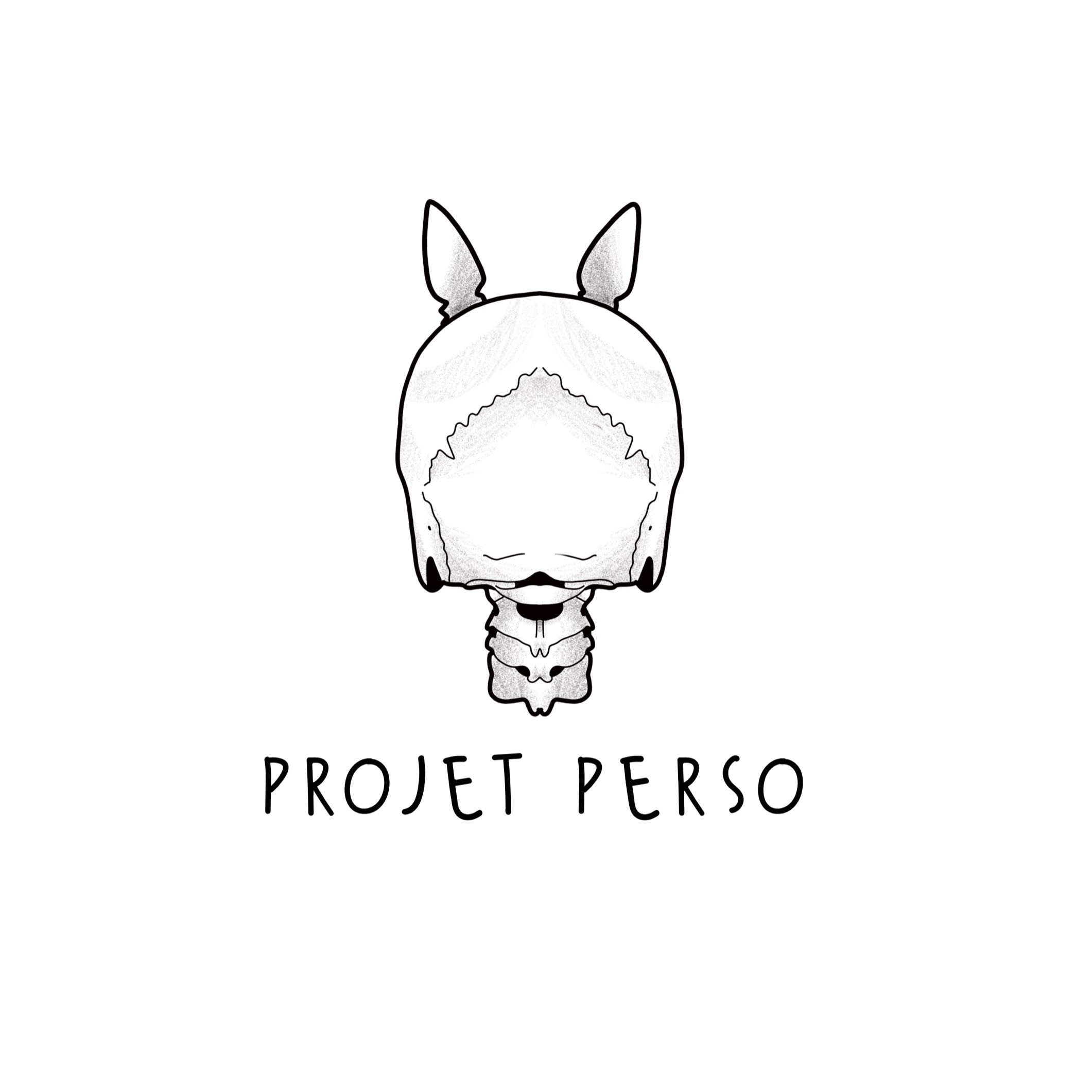 Projet perso ( Acompte )
