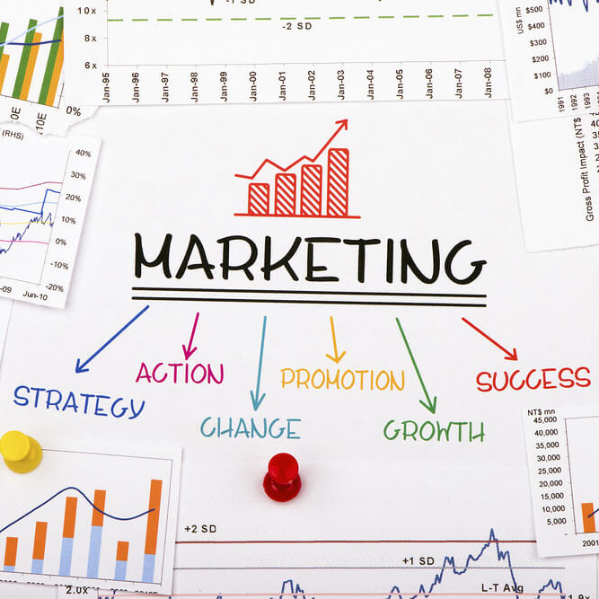 Business & Marketing Overview