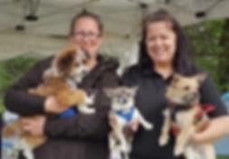 Go Walkies Poole Dog Walking and Pet Sitting team Pamela and Gemma
