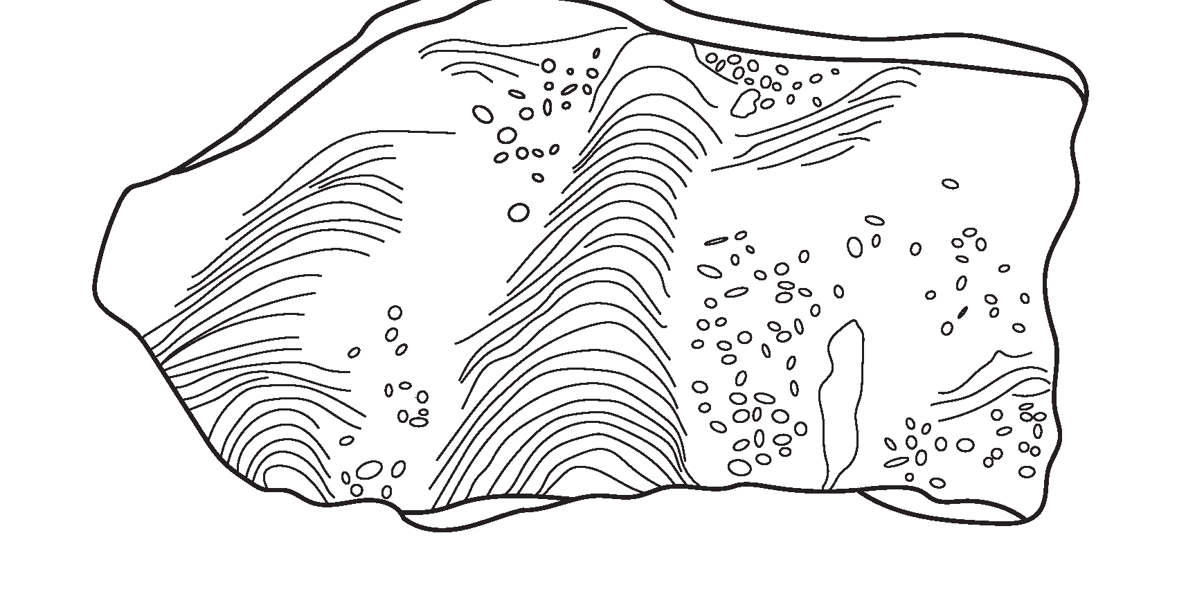 OrtonGeologicalMuseumColoringBook_Page_0