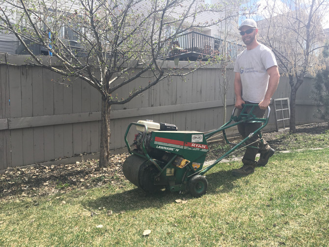 The importance of a spring clean-up