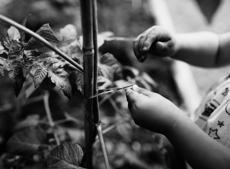 Finding the color in black & white photography