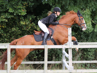 Extra Showjumping Date Added