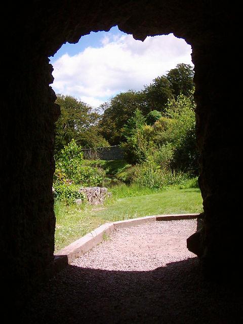into-the-garden-1229024-1279x1705.jpg