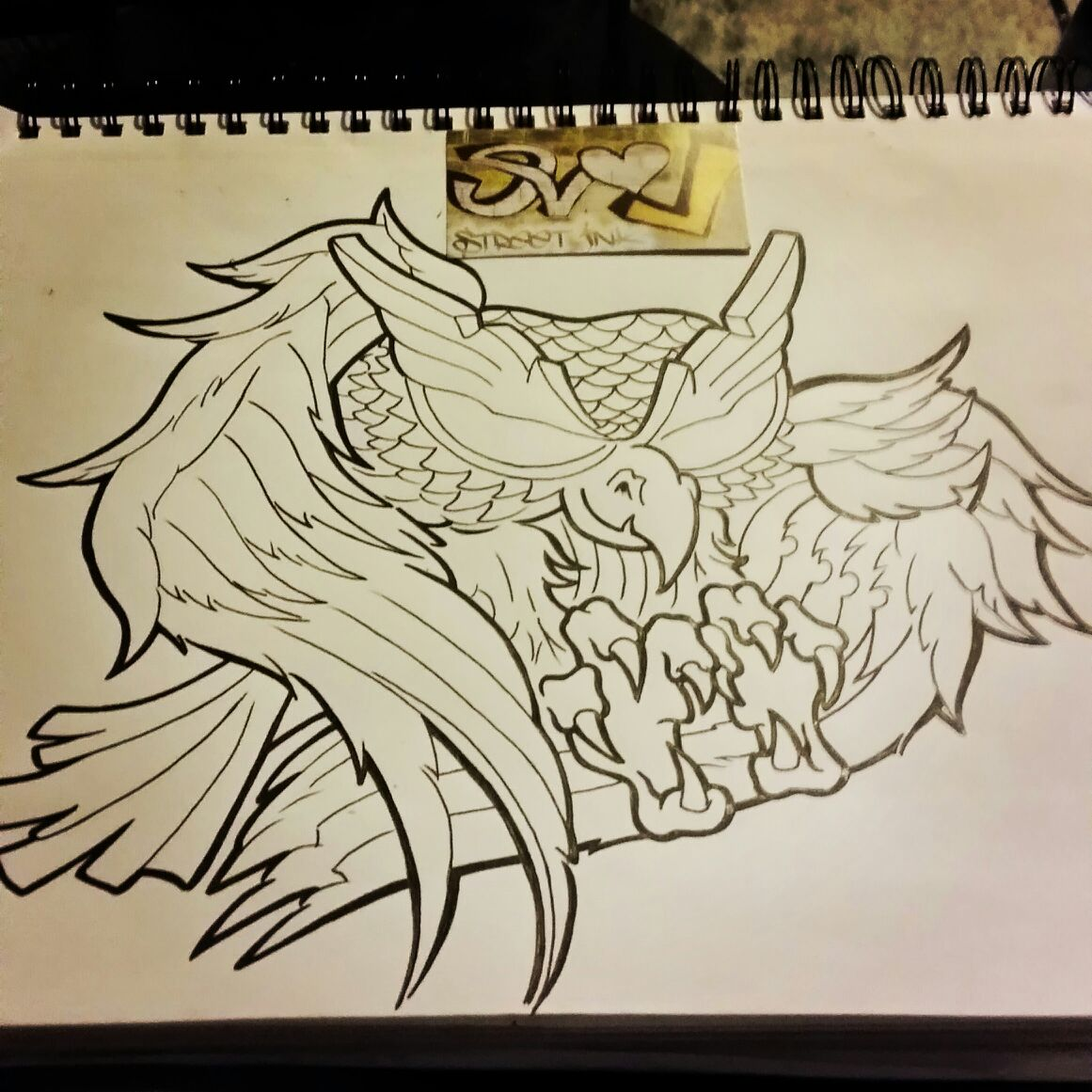 owel drawing mike b.