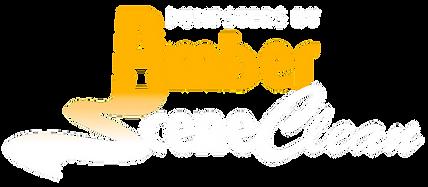 DASC-Logo-WhiteYellow.png