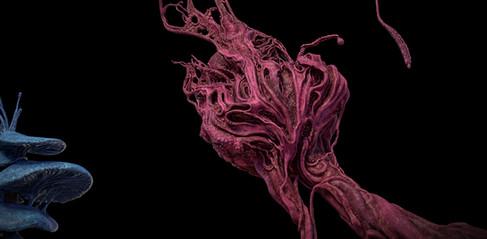 Alien_planet_007_PlantB_01_VitalyVarna.j