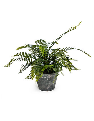 Faux Potted Fern Plant