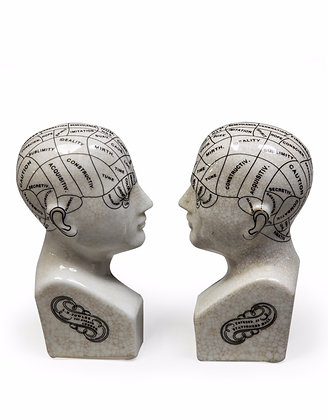 Phrenology Bookends