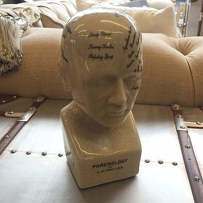 Phrenology head