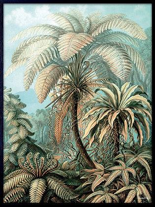 Palm Heaven Print
