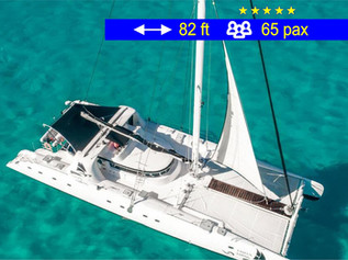 Catamaran Tours Amazing Cancun               82 ft  /  65 pax