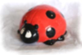 Big_Ladybird.jpg
