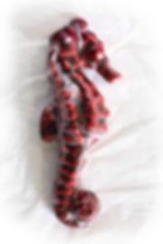 Tiny_Seahorse.jpg