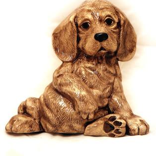 puppy001.jpg