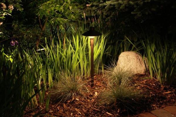 Seans_Landscape Lighting -2.jpg
